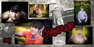 webChandlerCollage